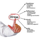 Diagramme des conséquences du stress — Photo