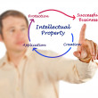 Stock Photo: Intellectual property diagram