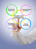 Diagram of emotional intelligence — Stock Photo