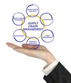 řízení dodavatelského řetězce — Stock fotografie