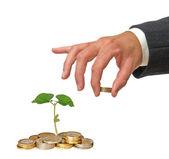 Investir à l'agriculture — Photo