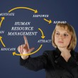 Human resource management — Stock Photo #26502329