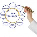 Team building — Stock Photo