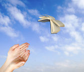 Flying book — Stock Photo