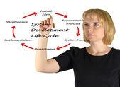 životního cyklu vývoje systému — Stock fotografie
