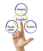 Vůdce dovednosti — Stock fotografie
