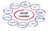 Good leader — Stock Photo