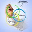 Knowledge Management — Stock Photo #27734279