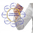 Stock Photo: Enterprise Governance