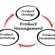 Product management — Stock Photo #28959765