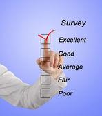 Survey — Stock Photo