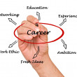 Diagram of career success — Stock Photo #28960421