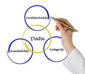Principy správy dat — Stock fotografie