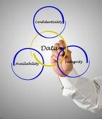 Princípios de gestão de dados — Foto Stock