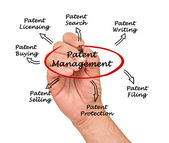 Patentmanagement — Stockfoto