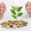 Stock Photo: Investing to green business