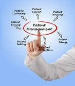 Gestión de patentes — Foto de Stock