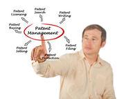 Patent beheer — Stockfoto