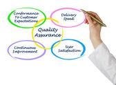 Aseguramiento de la calidad — Foto de Stock