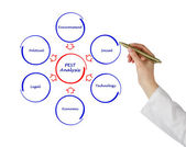 Diagram of PEST analysis — Stock Photo