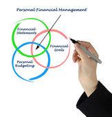 Osobní finanční řízení — ストック写真