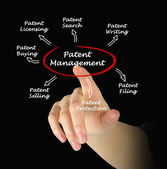 Patent management — Stock Photo