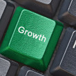 Key for growth — Stock Photo