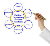 Factors impacting market position — Stock Photo