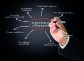 Operating Objectives — Foto de Stock