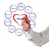 Diagram of health — Stock Photo