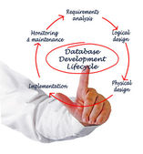 Database development lifecycle — Foto de Stock