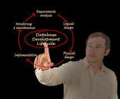 Database development lifecycle — Stock Photo