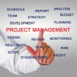 Project management — Stock Photo #37934745