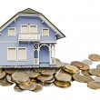 House and money — Stock Photo #37935087