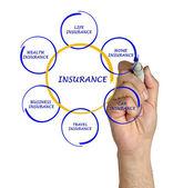 Presenting insurance diagram — Stock Photo