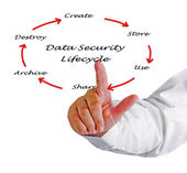 Data Security Lifecycle — Stock Photo