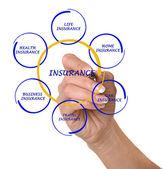 Diagramm der versicherung — Stockfoto