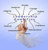 Diagram of leadership qualities — Stock Photo