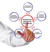 Planowanie zasobów przedsiębiorstwa — Zdjęcie stockowe