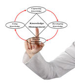 Diagram of knowledge managment — Stock Photo
