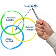 Stock Photo: Wealth diagram