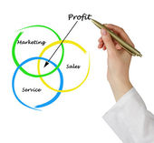 Diagram of profit — Foto Stock