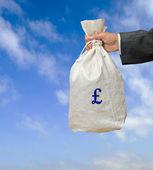 Bolso con dinero — Foto de Stock