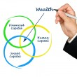 Wealth diagram — Stock Photo #40303097