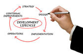 Präsentation des entwicklungszyklus — Stockfoto