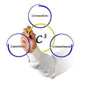 C3 diagram — Foto Stock