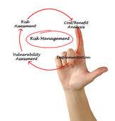 Diagram of risk management — Stock Photo