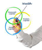 Wealth diagram — Stock Photo