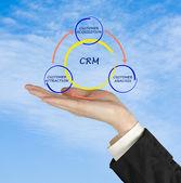 CRM diagram — Stock Photo