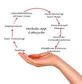 Mobile App Lifecycle — Stock Photo